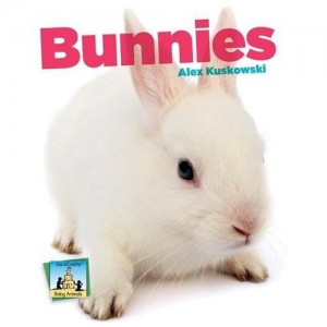 Bunnies cover 2